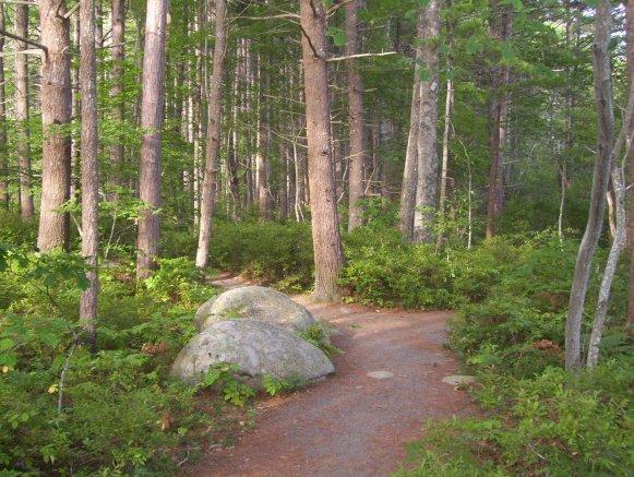 Miller Point 公園